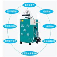 酿酒厂酿酒燃气蒸汽发生器