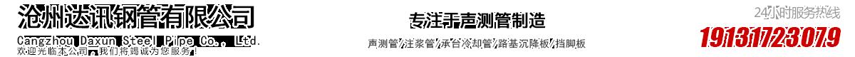 漳州沧州达讯钢管有限公司