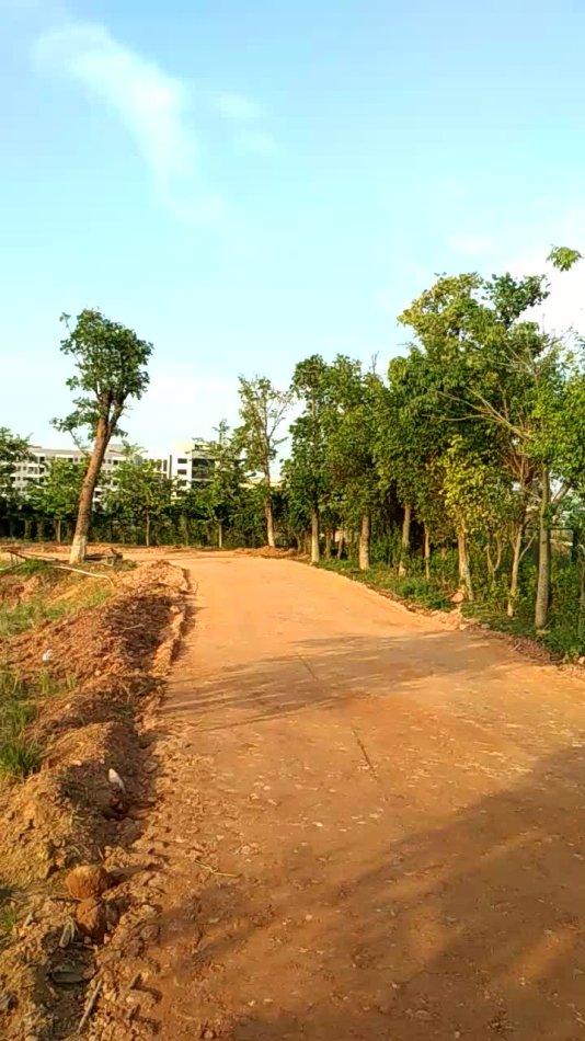 黄冈土壤固化淤泥处理黄冈黄土土壤固化剂制造商-