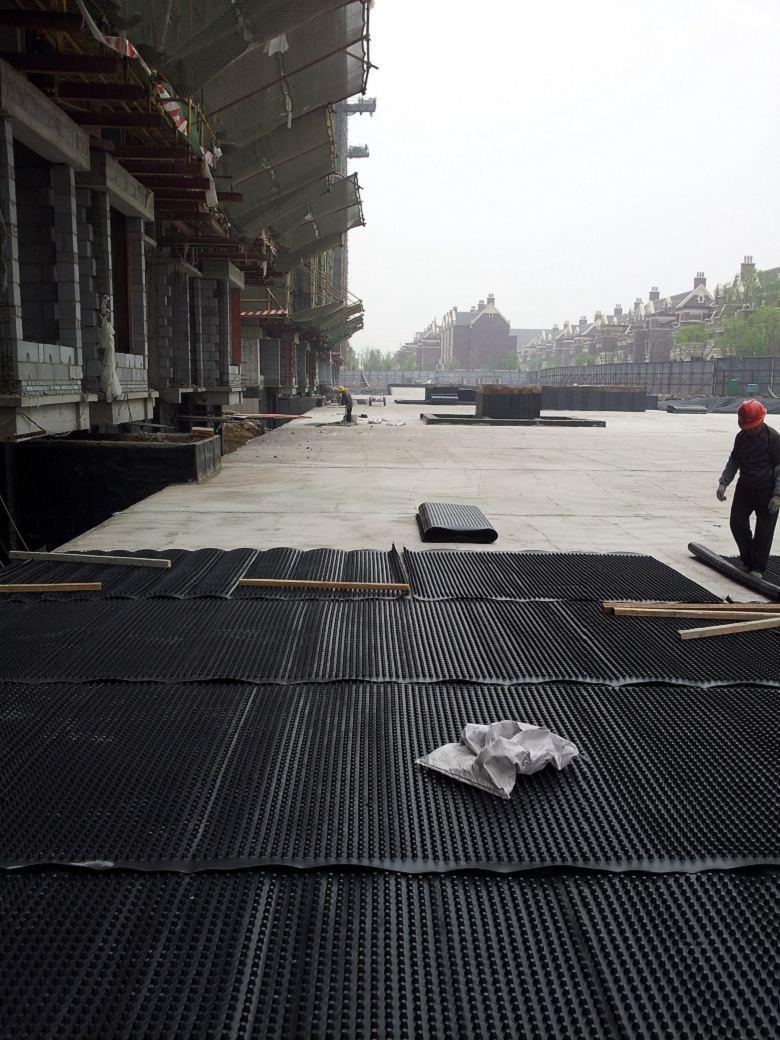 揭阳地库排水板供求