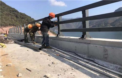 新余碳素钢喷塑桥梁护栏安装价格