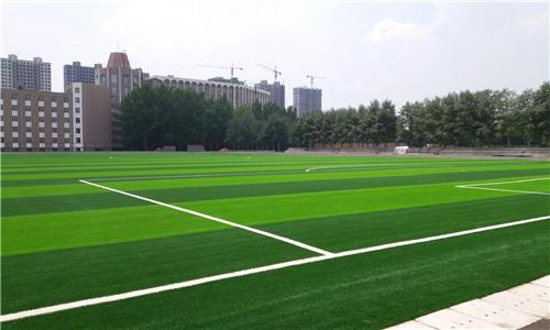 湖南幼儿园EPDM塑胶场地施工