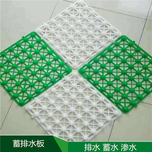 辽宁凹凸型塑料滤水板(防排水板多少钱