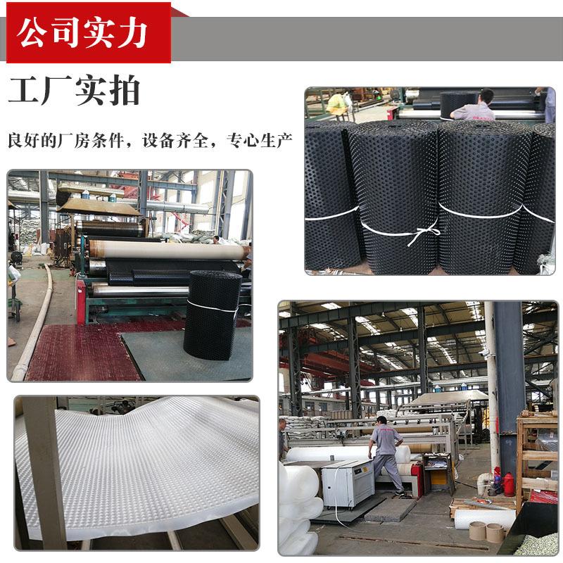 淮北凹凸型塑料疏水板-防排水板生产厂家