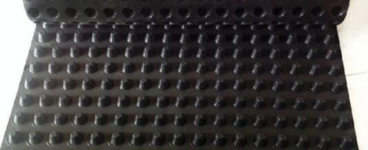 安徽省蚌埠高2公分塑料蓄水板經銷商 廠家供貨