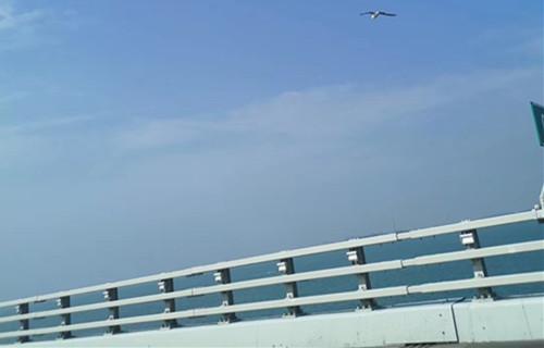 湖南交通栏杆今日供求