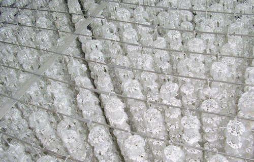 漳州改性纤维球执行标准