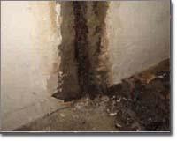 西乡地坪漆施工20多年专业经验贴心服务