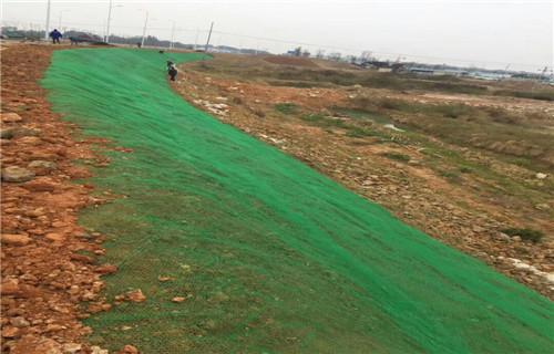 黑龙江三维网植草护坡厂家批发//黑龙江三维土工网垫当地总经销