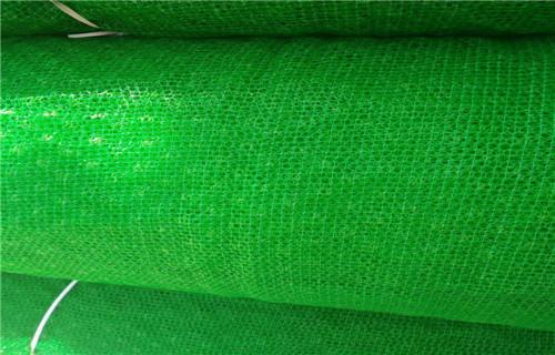 迪庆优质三维植被网专业生产厂家