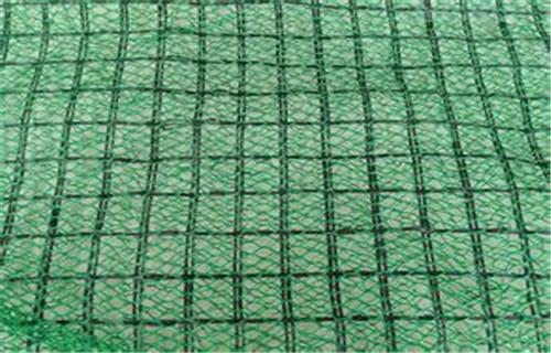 临沂优质三维植被网生产厂家//临沂三维土工网垫当地总经销