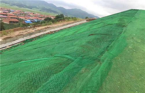 威海护坡三维植被网哪家好