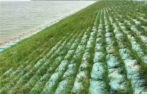 湖南河道护坡生态袋厂家@规格