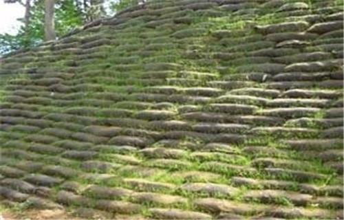 黑龙江椰丝生态毯批发——现货供应
