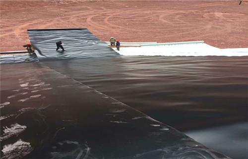 辽宁人工湖专用复合土工膜厂家强力推荐