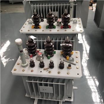 寿宁油浸式变压器厂家-寿宁中能变压器厂