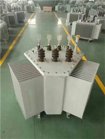 广饶油浸式变压器厂家-广饶变压器厂我们更