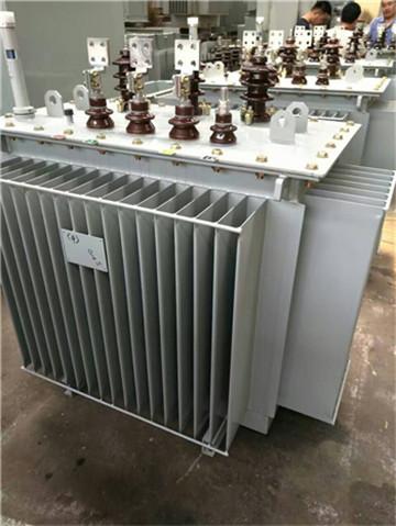 若尔盖S11油浸式变压器厂-若尔盖光大变压器厂家