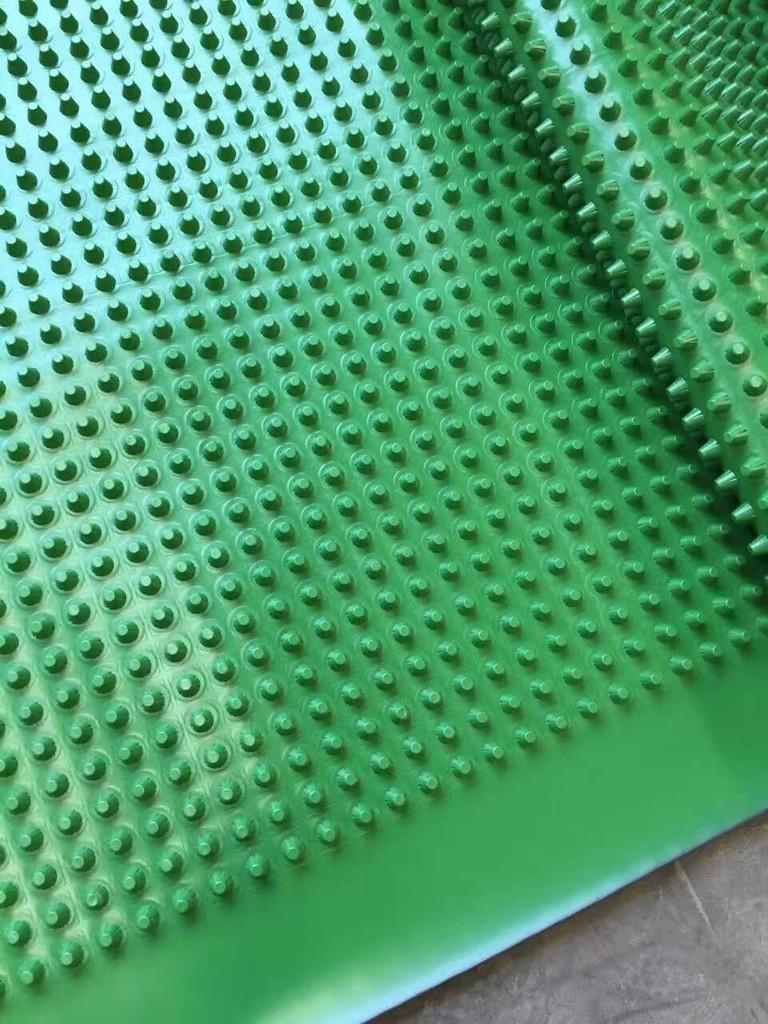 黔西南普安凹凸排水板排水板/凹凸排水板