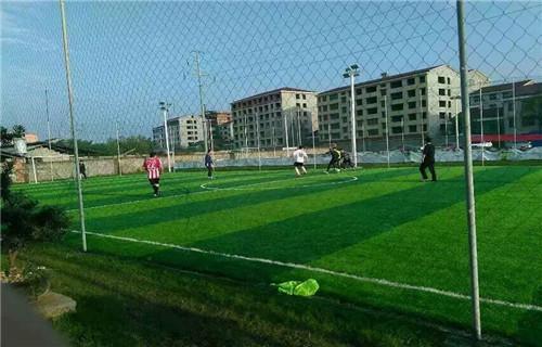 锦州市凌海人造草坪场地安全环保厂家体奥体育有限公司
