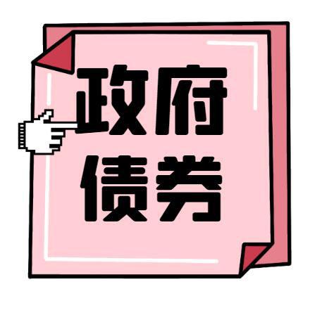 政府专项债报告_山城国家专项债银行对接