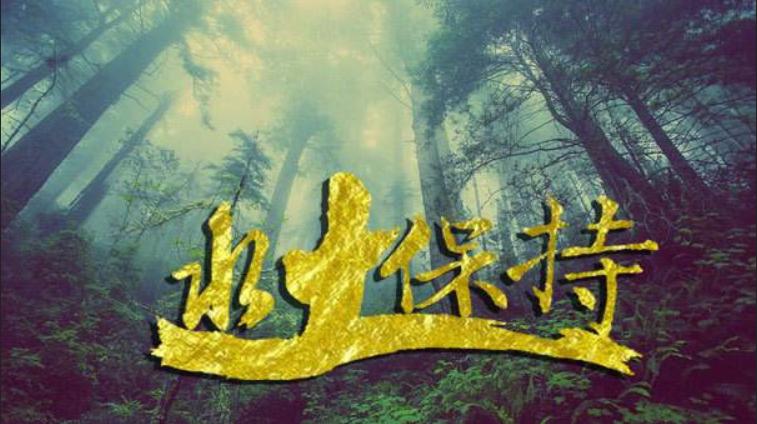 栾川编写水土保持设计方案的公司-更懂政策