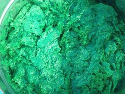 山东省德州平原VEGF中温鳞片胶泥出厂价厂家