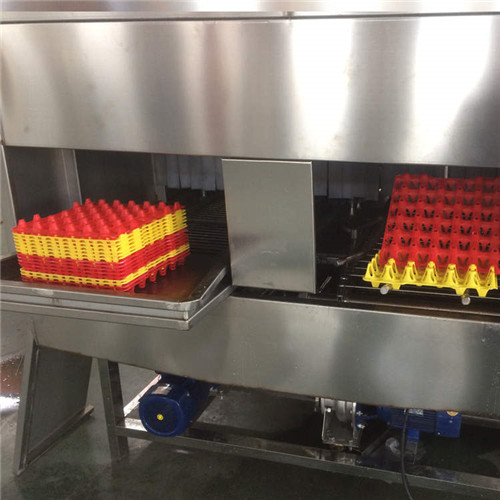 漳州康致达设计生产全自动蛋托清洗机通过客户验证全自动去污去毛去粪便