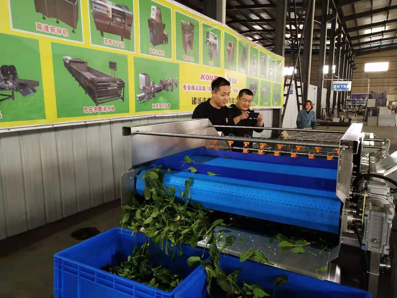 漳州土豆清洗机定制加工适用性强技术支持