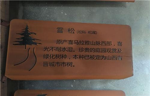 安庆耐候锈钢板热销