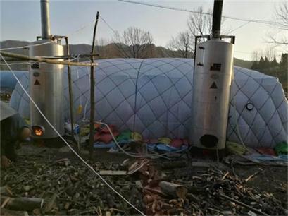 湖南省张家界市灵芝菌种栽培技术