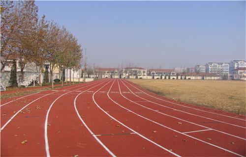 东营塑胶跑道施工塑胶篮球场橡胶跑道材料