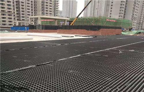 东营广饶排水板土工布【虹吸排水板厂家供应】
