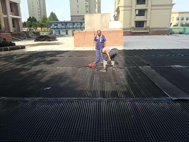 西宁市3公分排水板