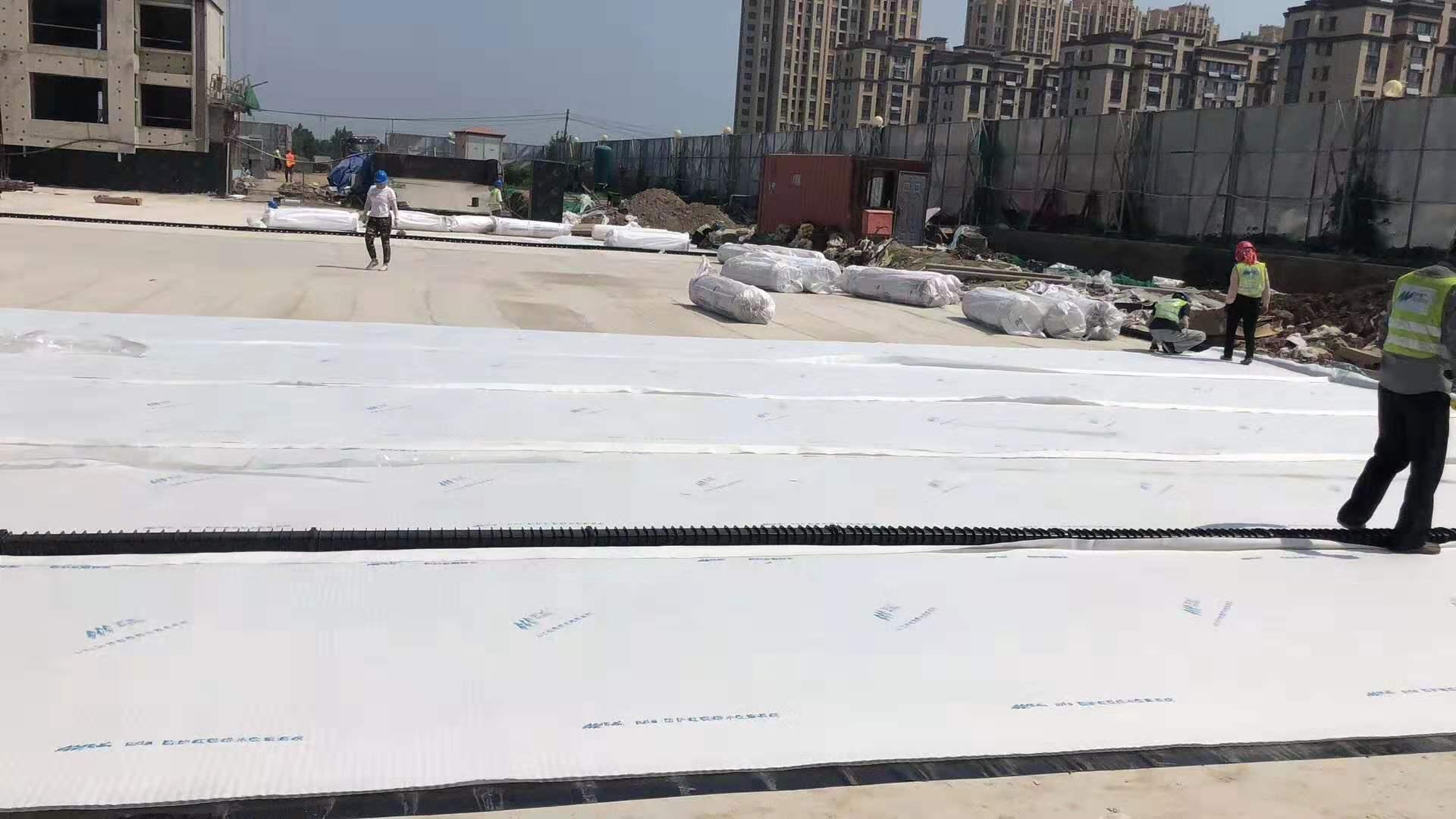 东营市河口ped14高分子防护排水异型片【华旭土工】