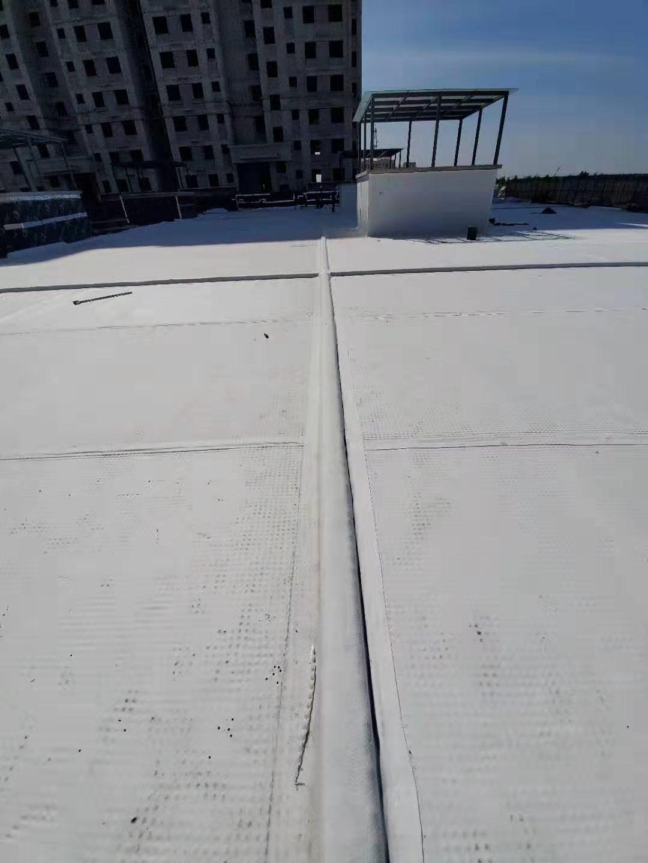 临沂市楼顶花园蓄排水板楼顶花园蓄排水板【华旭土工】
