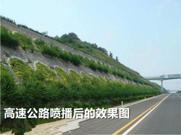 高速种草绿化机器厂家安庆市注意事项