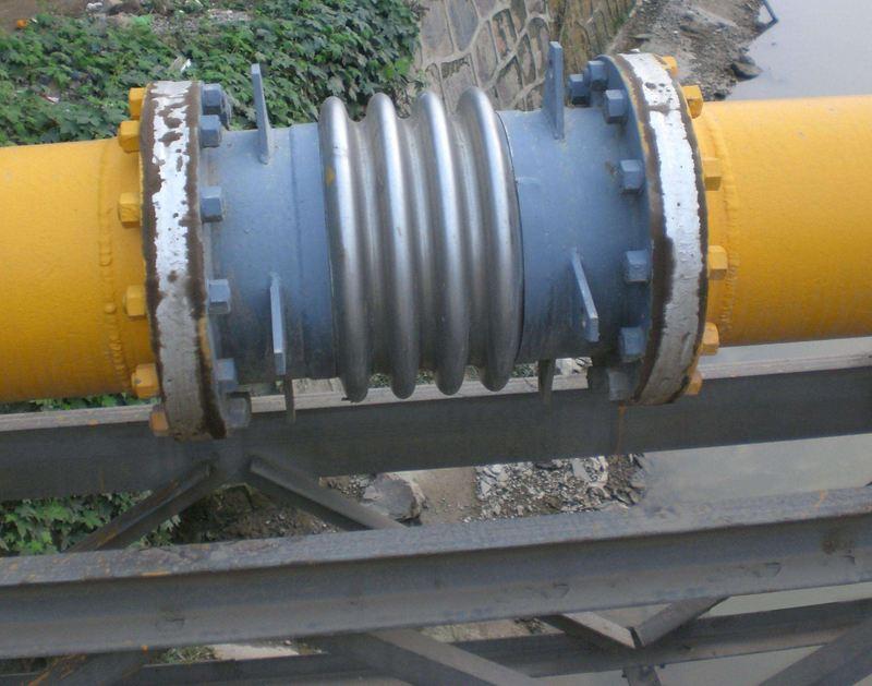 布尔津不锈钢伸缩器规格型号