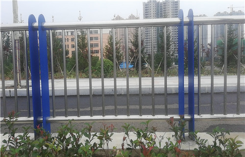 莆田防撞桥梁护栏厂家