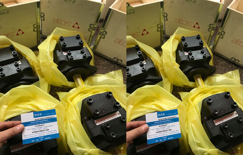 江西YB-E200/50  叶片泵@联系厂家