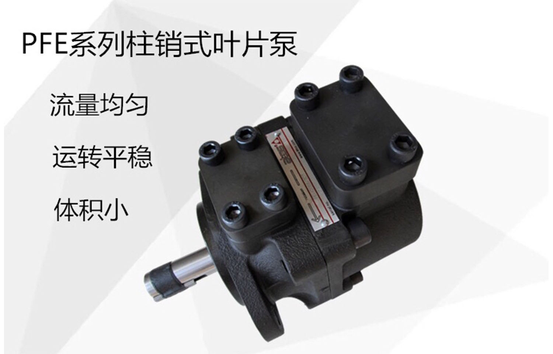 江西新闻推荐:YB-E160/50  叶片油泵