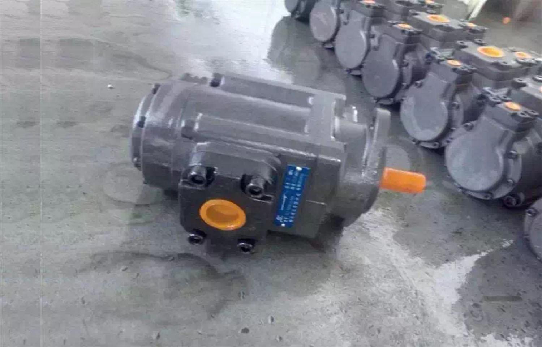 长沙SQP2-10-86A-18叶片泵新闻头条