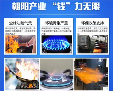 山东餐饮植物油燃料技术