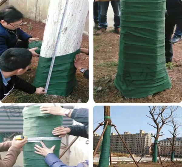 漳州裹树布单层加厚加膜一卷20米生产厂家