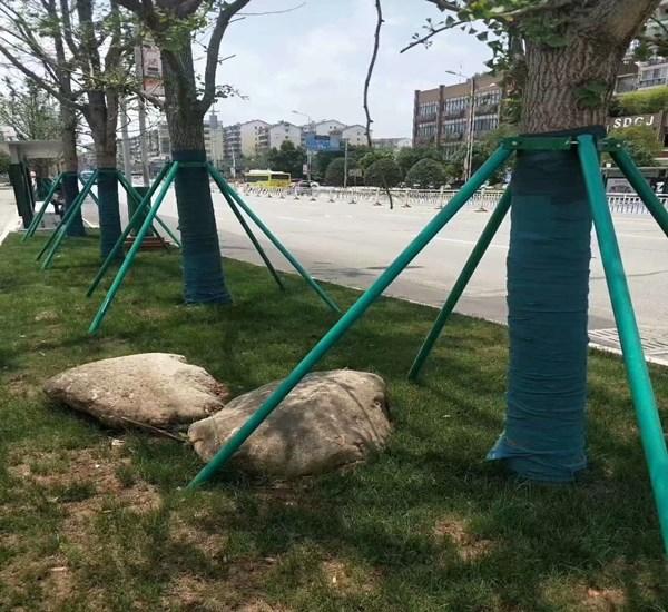 攀枝花树木保温裹树布1米绿化印花防寒布包树布生产厂家