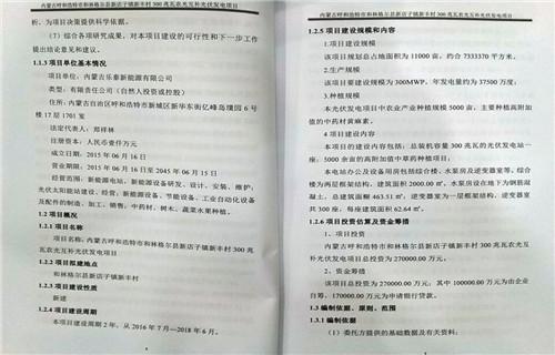 隆昌专写招投标书范本的案例—通过率高