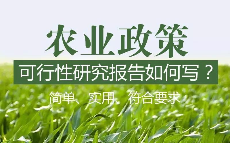 内江本地编写专项债券实施方案—可加急