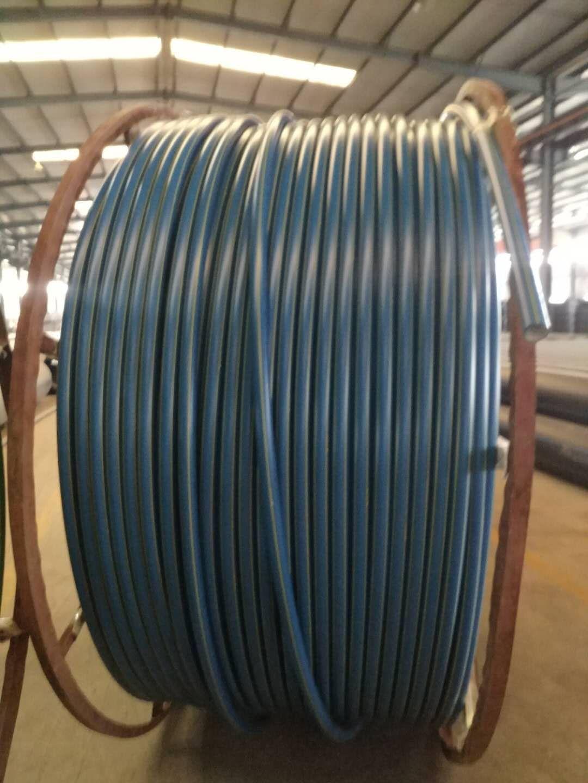 沧州任丘PVC管材给水管DN50*