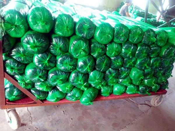乌鲁木齐1米无纺布印花防寒布单膜绿化防寒布树木保温缠树带生产厂家
