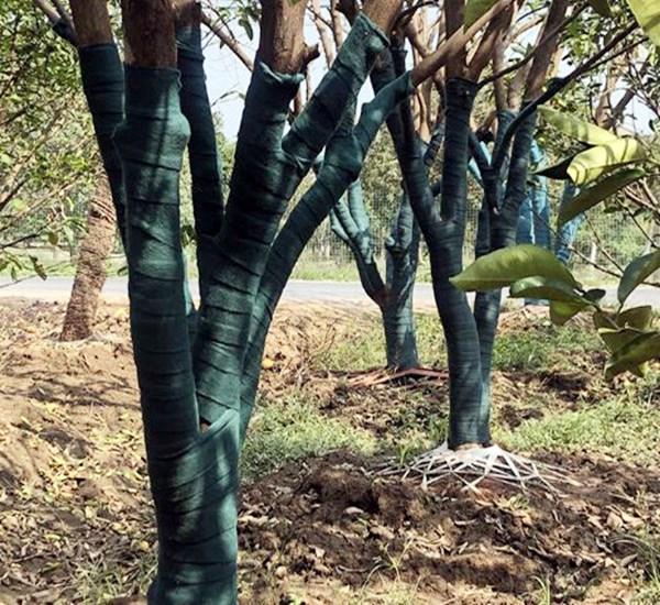 长春1米无纺布印花防寒布单膜绿化防寒布树木保温缠树带生产厂家